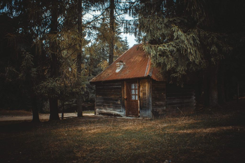 house isolated in the woods
